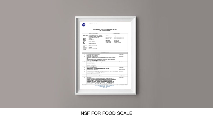 NSF-for-Food-scale
