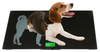 FCW-G 150kg animal weighing glass pet scale weighing dog